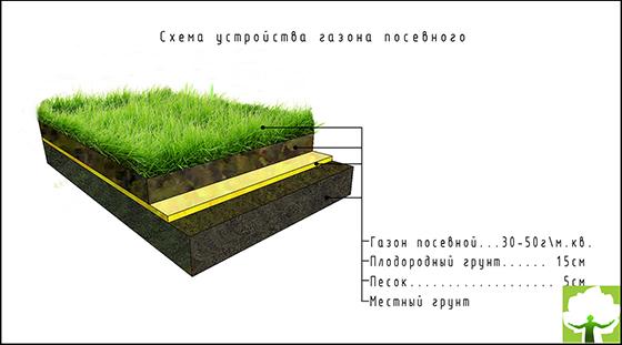 Схема устройства газона